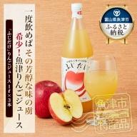 「ふじだけ」りんごジュース 1リットル 3本 ストレート果汁100% リンゴジュース アップルジュース 林檎ジュース
