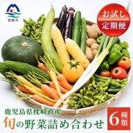 CC-0015 お試し2回の定期便 鹿児島県枕崎産 旬の野菜 厳選 詰め合わせ 野菜ソムリエ レシピ付き