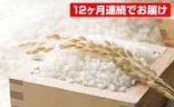 【12か月連続お届け】若狭富士の米10kg