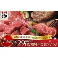 《自分へのご褒美にも》飛騨市推奨特産品飛騨牛極 毎月29日(肉の日) 飛騨牛を食べよう! 半年バージョン[L0008]