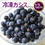 ノーザン・ベリーズ 冷凍カシス1.2キログラム