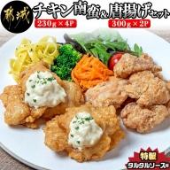 チキン南蛮&唐揚げセット_AA-9209
