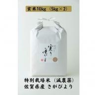 D−177.特別栽培米(減農薬)さがびより玄米10kg