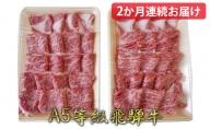 【2か月定期便】A5等級飛騨牛焼き肉用1kg ロース又は肩ロース肉