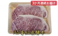 【3か月定期便】A5等級飛騨牛サーロインステーキ用500g(1枚約250g×2枚)