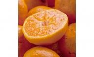 ZH6901_厳選★季節の柑橘定期便 3kg【毎月・計12回】【頒布会】