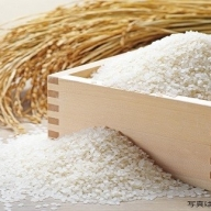 B3-16 令和2年産 無洗米5kg(ヒノヒカリ)