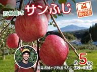 [青森県産りんご]青森県鰺ヶ沢町 西樹園のサンふじ約4~5kg(12~18玉)