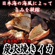 青森県鰺ヶ沢町 炭火焼きイカ 3パックセット ※ご入金確認後 3ヶ月以内の発送になります。 青森 イカ いか 国産 魚介