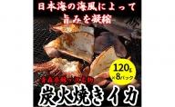 青森県鰺ヶ沢町 炭火焼きイカ 8パックセット ※ご入金確認後 3ヶ月以内の発送になります。 青森 イカ いか 国産 魚介