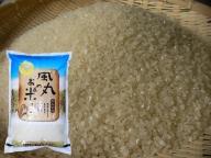 新米 令和2年産米 つがるロマン(精米)5kg 風丸農場のお米