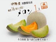 津軽産 減農薬栽培メロン1玉 糖度16度以上保障!