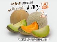 津軽産 減農薬栽培メロン2玉 糖度16度以上保障!