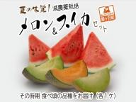 夏の味覚! 減農薬栽培「メロン&スイカ」セット(各1ケ)