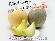 長谷川さんが作ったメロン2個(品種おまかせ)
