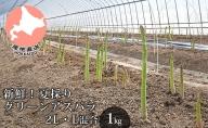 新鮮!夏採り【グリーンアスパラ】2L・L混合(1kg)