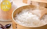 いくさかのお米 10kg 白米 こしひかり コシヒカリ 米