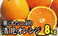 【農家直送】果汁たっぷり!清見オレンジ 約8kg  有機質肥料100% ※2021年3月上旬より順次発送予定(お届け日指定不可)