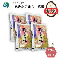 【令和3年産新米・早期受付・10月中旬より発送予定】秋田県能代市産 あきたこまち 玄米 20kg(5kg×4袋)