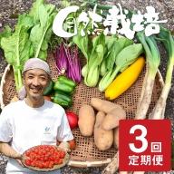 《事前予約》《期間限定》飛騨ありがとうファーム 無農薬栽培 野菜セット 7品 3回お届け 定期便 お野菜のレシピ付き 野菜 定期便