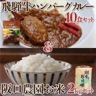 飛騨の米2kg+飛騨牛ハンバーグカレー10食 飛騨牛 カレー 飛騨産 コシヒカリ さくら物産館