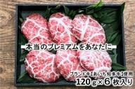 知多牛【プレミアム】ハンバーグ『響』 一枚一枚が【肉職人の手作り】※北海道・沖縄・離島の方は量が異なりますので、下記内容量欄で確認してください。