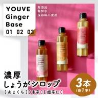 21-759.生姜好きさんにオススメ!濃厚・しょうがシロップ3種セット【あまくち・中辛・超辛口】