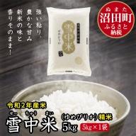 北海道 ゆめぴりか 5kg 精米 令和2年産 雪中米