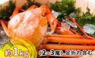 新湊産紅ズワイガニ約1kg(2~3尾)【棚辺水産】