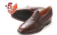オーストリッチ革 ビジネスシューズ 紳士靴 スリッポン 5cmアップ 4E ワイド No.65 ブラウン