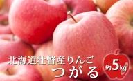 <2020年9月下旬頃よりお届け>北海道壮瞥産りんご つがる 約5kg(14~18玉)【ご家庭用】