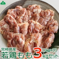 36-118_宮崎県産若鶏<もも肉3kg>