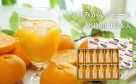 【静岡三ヶ日】三ケ日みかんジュース ストレート「あおしま」180ml 12本