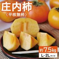 SA0922 庄内柿 7.5kg