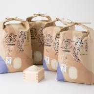 【C-538】よこいファーム 特別栽培米みずかがみB [高島屋選定品]