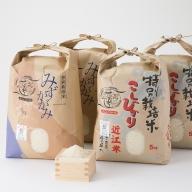 【C-540】よこいファーム 特別栽培米食べ比べセットB [高島屋選定品]