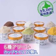 【水本牧場の放牧牛の生乳を使用した】Gigiのイタリアンジェラート6種12個入りアソートセット【43035】