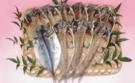 伊豆の味 かねた水産自慢の真あじの干物