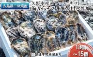 矢野水産 フレッシュギフト 海からそのまま殻付き牡蠣13個~15個【配達不可:北海道・沖縄・離島】