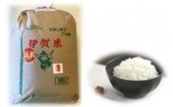 令和2年産伊賀米コシヒカリ  白米約26kg