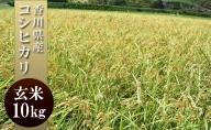 はなまる農園 令和3年 新米予約 香川県産「コシヒカリ(玄米)10kg」