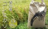 はなまる農園 令和3年 新米予約 香川県産「コシヒカリ(玄米)30kg」