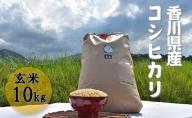 令和3年 ふじもとファームの新米予約【コシヒカリ(玄米)10kg】