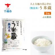 【無洗米】北海道産 う米蔵5kg【JA道央】