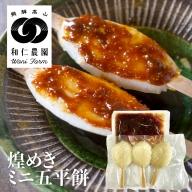 和仁農園 黄金の煌きミニ五平餅 みそ 白餅+みそあん 6本 飛騨 コシヒカリ