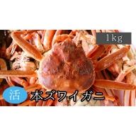 【ふるさと納税】活舞鶴かに(松葉かに/ズワイガニ)1キロサイズ