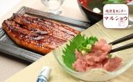 b30-012 定期便 3回 お楽しみ セット 焼津 の 魚 天然 南鮪