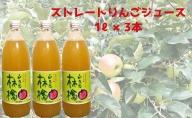 【2020年9月以降発送】完熟奥久慈りんご無添加100%ストレートジュース3本