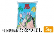 特別栽培米 ななつぼし「万馬券」5kg