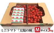 ミニトマト「太陽の瞳」Mサイズ3kg